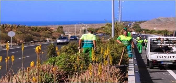 Licitaciones alicante servicio de mantenimiento de for Mantenimiento de parques y jardines