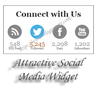 Attractive+Social+Media+Widget