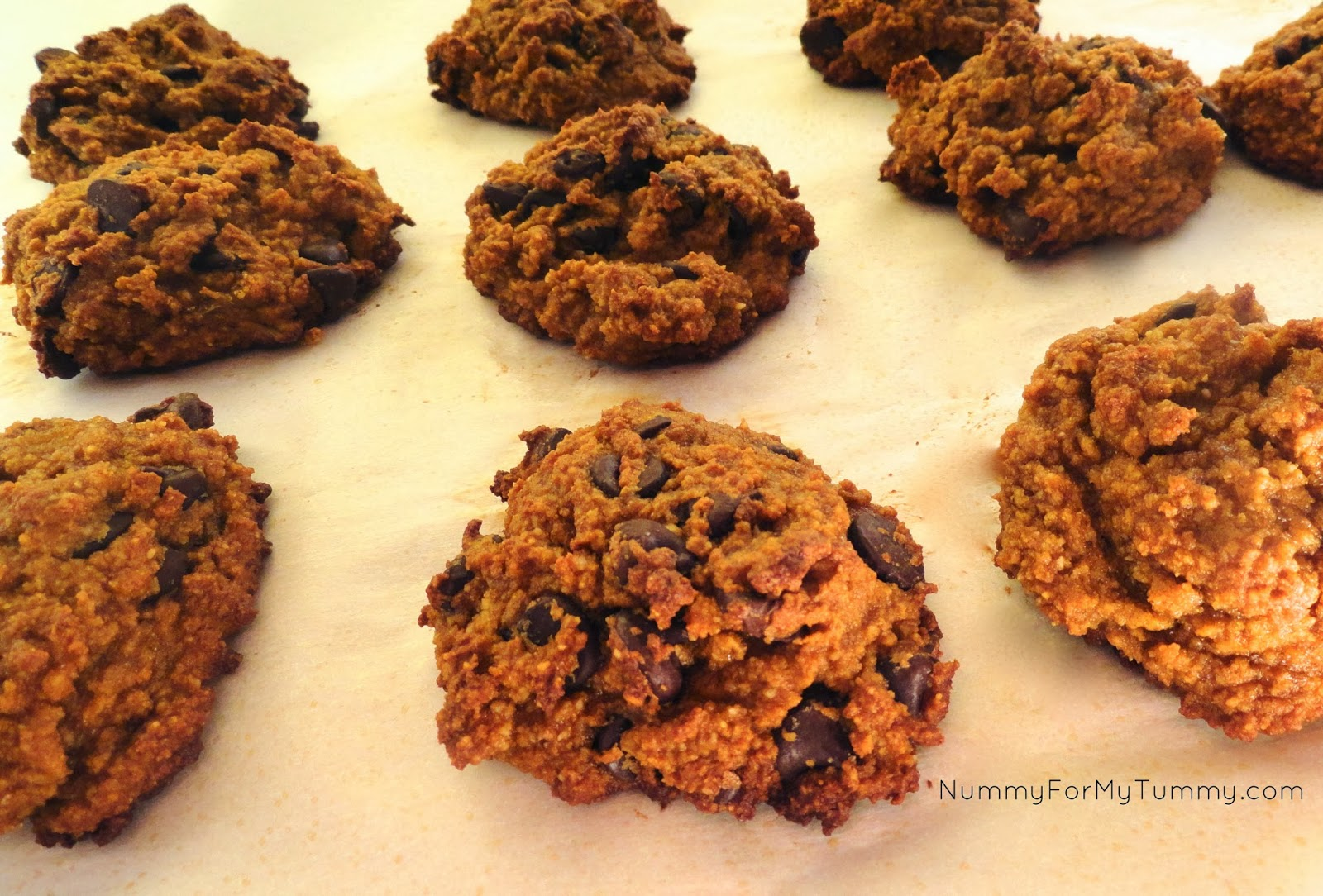 Gluten-Free Banana & Chocolate Chip Cookies