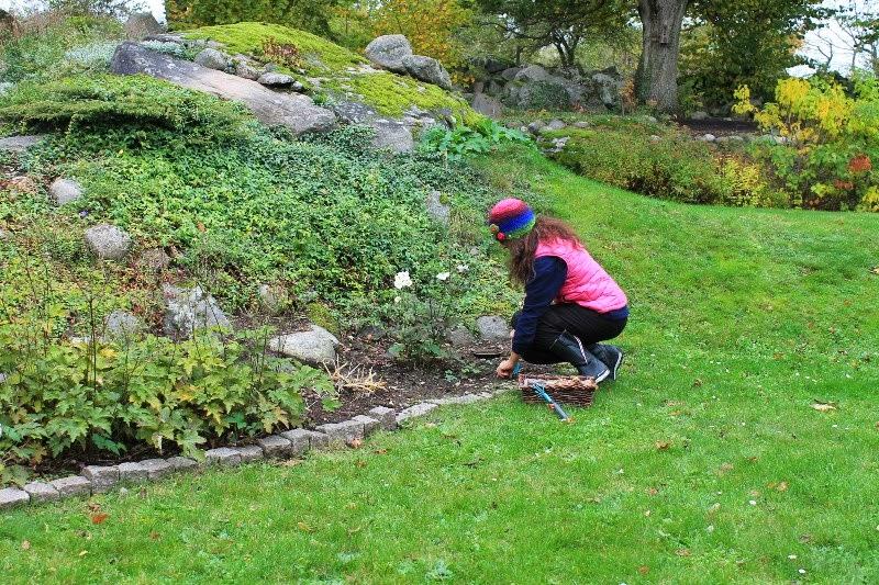 Io in giardino durante l'uppehåll!