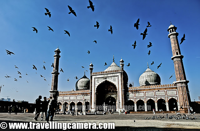 This is one of the photograph taken at India's largest mosque in Old Delhi - Jama Masjid !! This place is always surrounded by pigeons flying here and there. I waited for approximately 15 minutes to take this shot as movement is random most of the times. Luckily I didn't have to wait very long to get the right composition. This is what I wanted and I was happy to see the results. Hope to visit Jama Masjid again and come up with more photographs !!!
