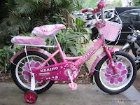 Sepeda Anak Merino Flower 16 Inci