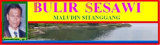 BULIR SESAWI