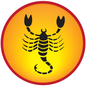 Scorpio 2015 Horoscope