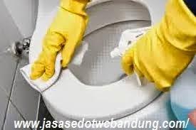 Tips Memilih Jasa Sedot WC yang Profesional