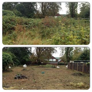 Garden Clearance - Godstone, Surrey