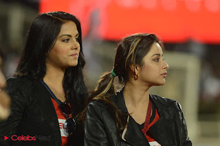 Telugu Actresses Pictures at Telugu Warriors Vs Karnataka Bulldozers CCL 3 Match ~ Celebs Next