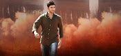 Mahesh Babu photos from Srimanthudu-thumbnail-4