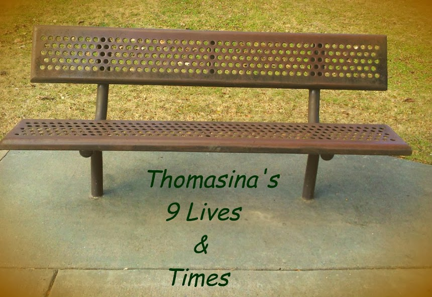 Thomasina's 9 Lives and Times