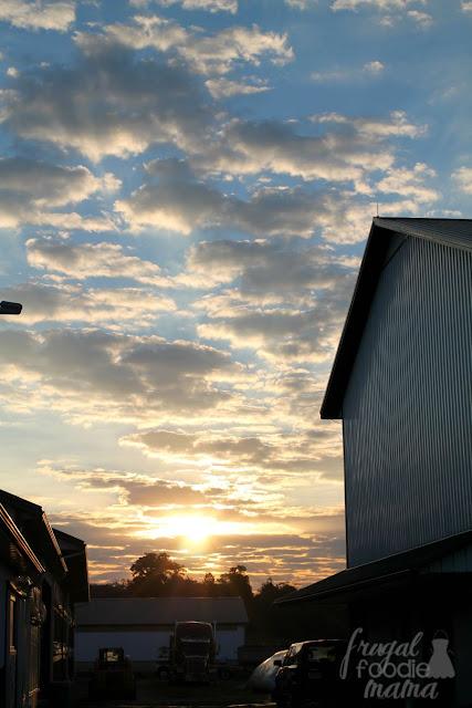Sunrise at Richman Farms in Lodi, Ohio.