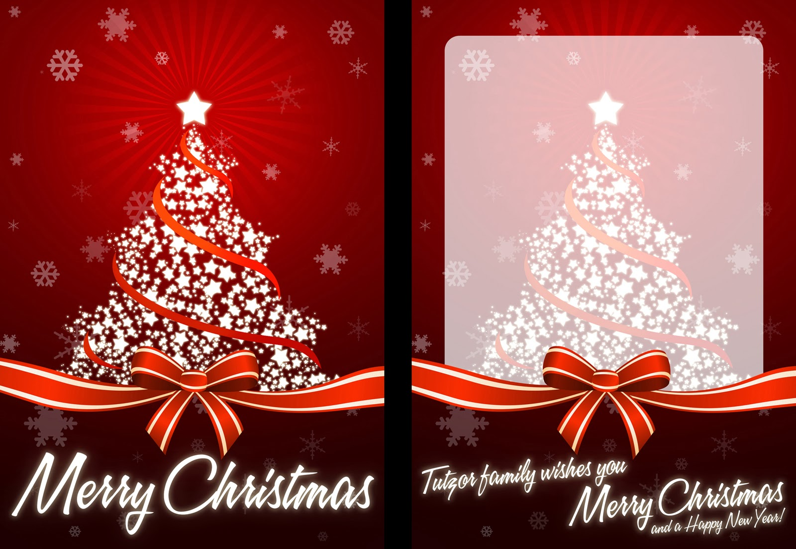 Christmas Photo Card Fun Pictues