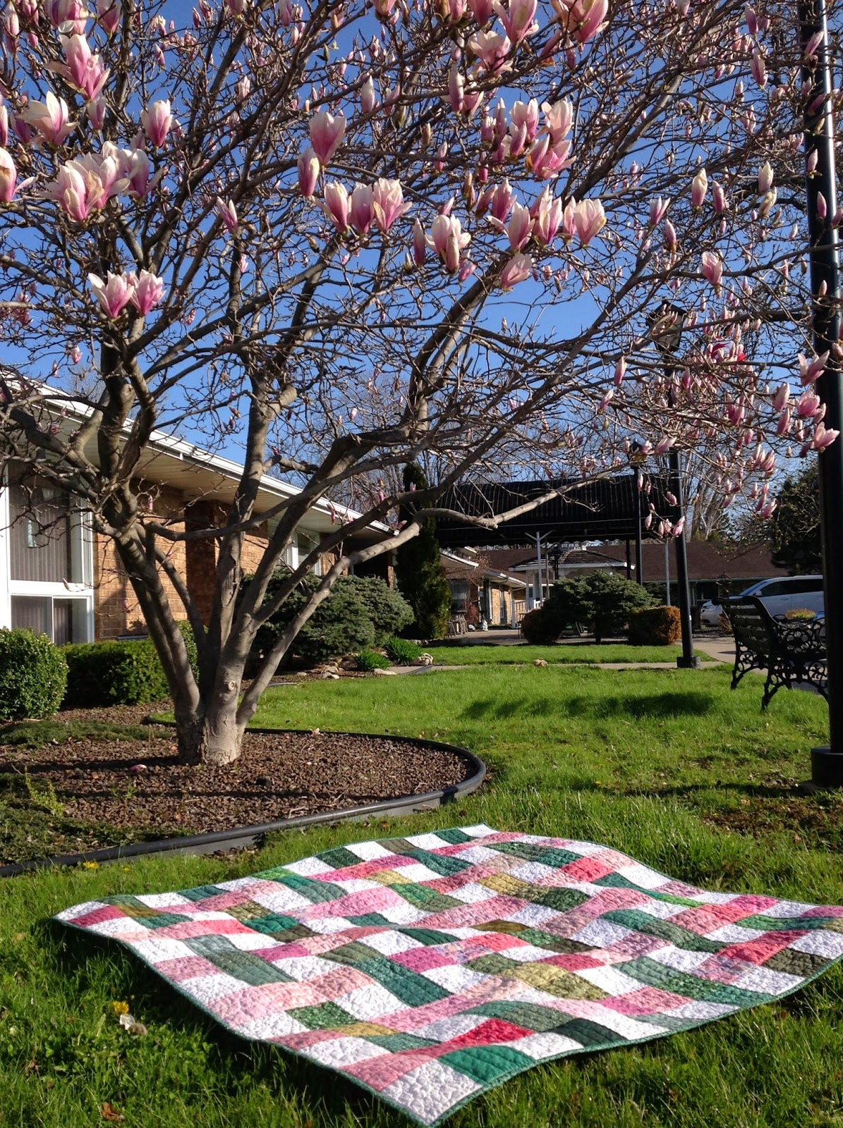 http://musingsofamenopausalmelon.blogspot.ca/2014/05/dogwood-picnic.html