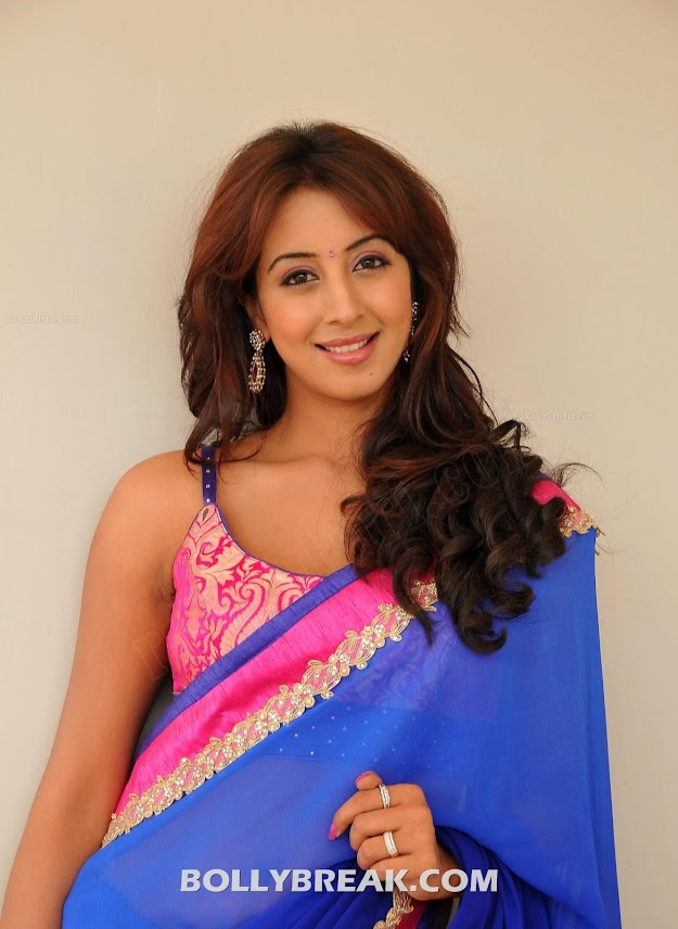 Sanjana in blue saree with pink and blue blouse -  Sanjana blue sari bare back HOT PHOTOS