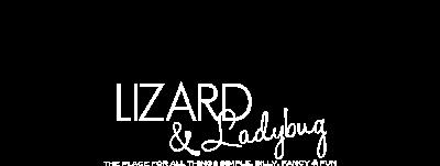 lizard & ladybug