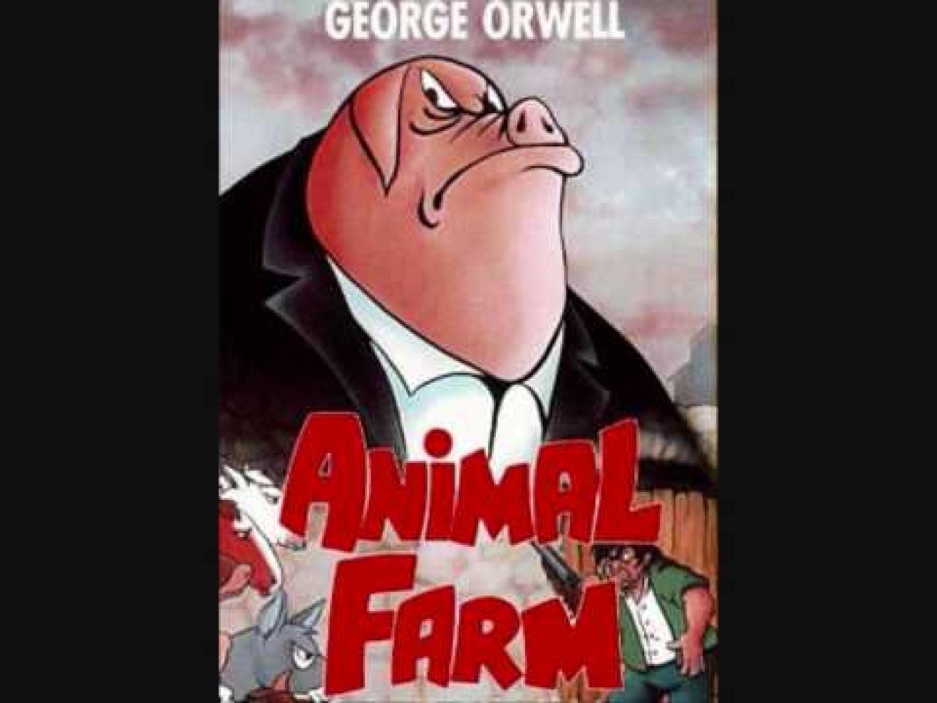 animal farm napoleon and boxer A) napoleon values and encourages literacy for all animals on the farm b) napoleon laments the animals' illiteracy and wishes that they took education more seriously c) napoleon's education of the young animals is more accurately described as indoctrination.