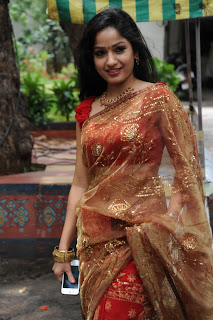 madhavi latha  Pictures in saree 15.jpg