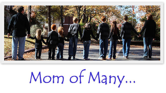 Mom of Many