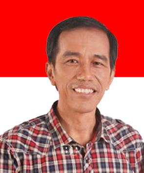 H. Ir. Joko Widodo (Jokowi)