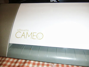 VIDEO SILHOUETTE CAMEO