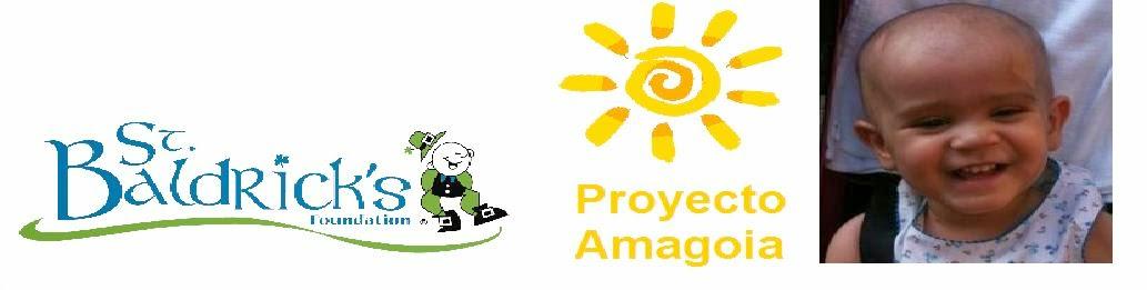 Proyecto Amagoia