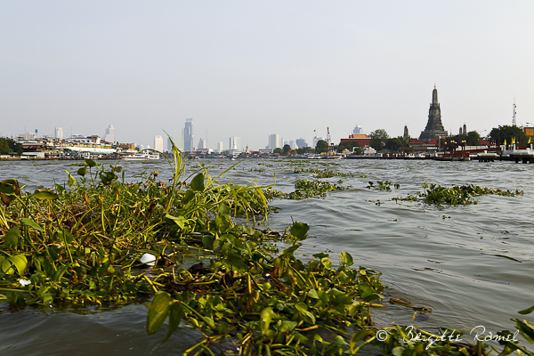 La Thailande et l'eau, Bangkok