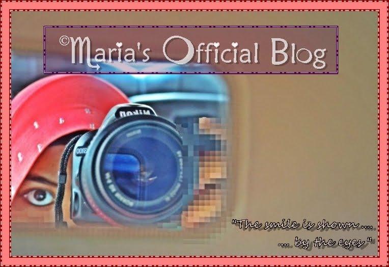 Maria's Blog