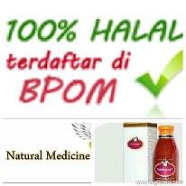 Obat Herbal Lupus