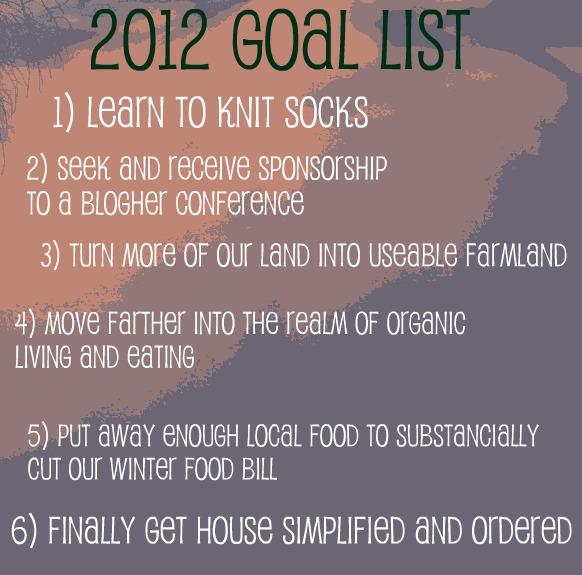 2012 Goals Little House Big Alaska