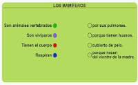 http://www.ceipjuanherreraalcausa.es/Recursosdidacticos/SEGUNDO/datos/03_cmedio/03_Recursos/actividades/03/act2.htm