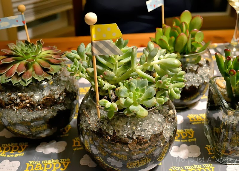 Sunshine and Grey Girl's Night Out succulent bowls