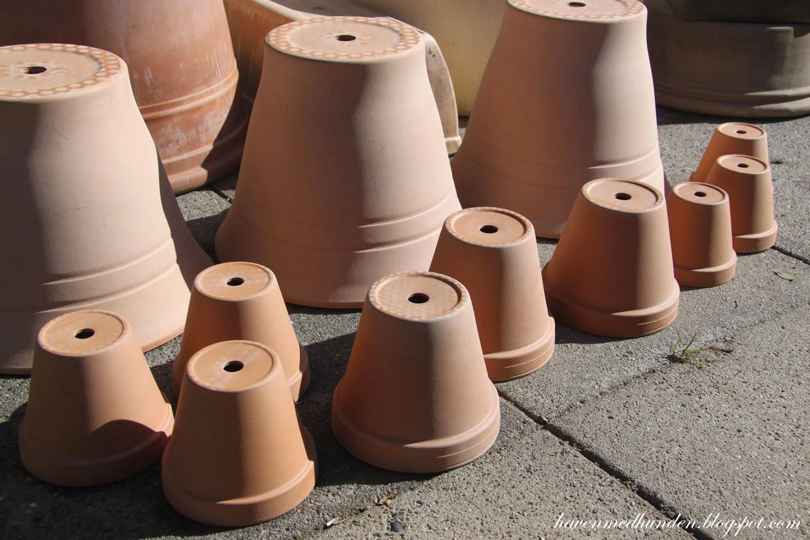 store lerpotter