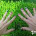 Mis uñas con actitud patria