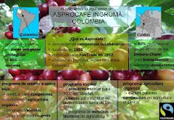 Bio - Café Colombia 100% Arábica