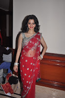 Vedhika, Hot, in, Red, Transparent, Saree, free hq , hd resolution images wallpapers, pic gallery