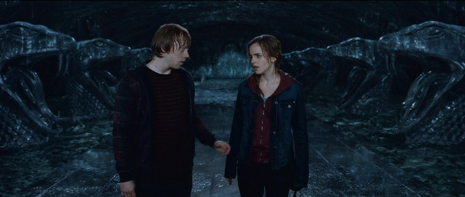 Laura's View: Harry Potter and the Deathly Hallows Part 2 Ron And Hermione Kiss Chamber Of Secrets