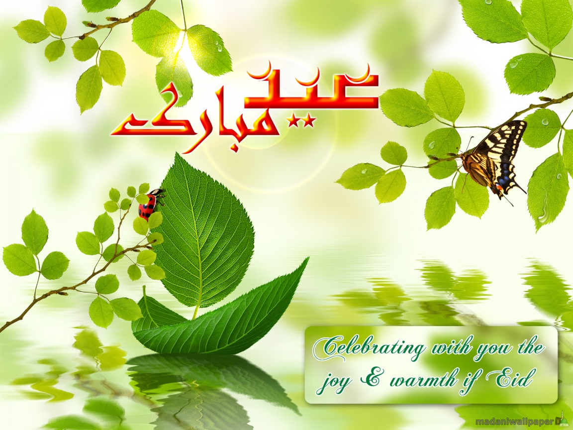 Wallpaper eid ul adha wallpapers 2010 http3bpspot rbpny0onr0sucnobeoh4ei kristyandbryce Choice Image