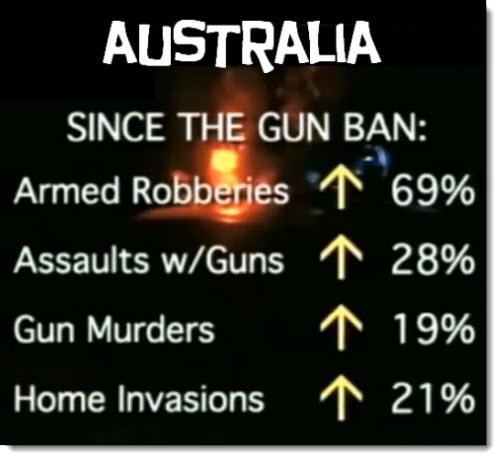 Australia Gun Ban Stats Chart