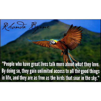 """People who have great lives talk more about what they love. By doing so, they gain unlimited access to all the good things in life, and they are as free as the birds that soar in the sky."" ~ Rhonda Byrne; Picture of a Parrot in flight with a mountain in the background."