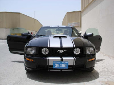 Mustangs For Sale