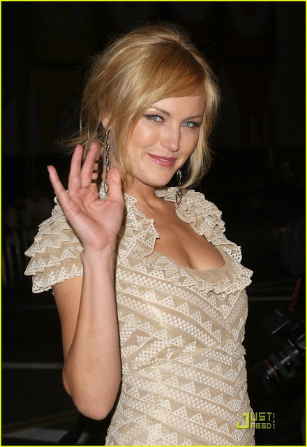 Malin Akerman | Biography