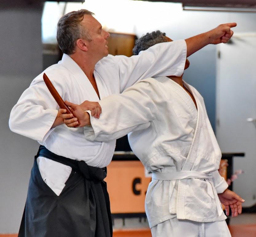 aikido-83.com