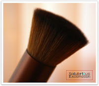 Salubrious Selection: EcoTools Buffing Brush