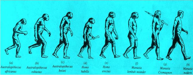 Gambar Manusia Purba