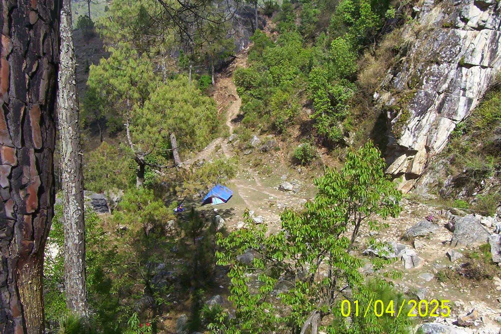 camping in forest garhwal uttarakhand