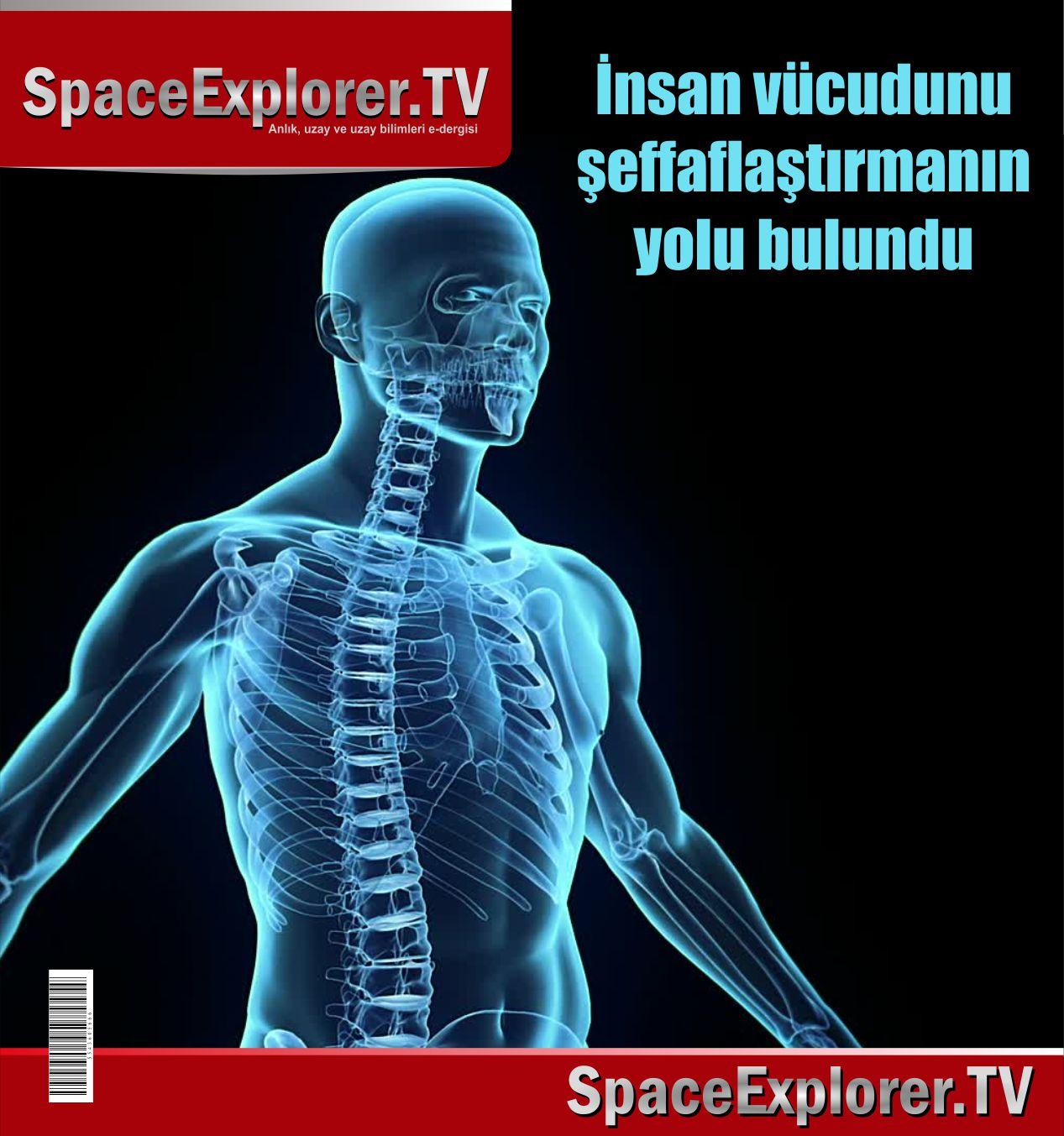 Biyoloji, Görünmezlik, Space Explorer, İnsan vücudunun sırları,