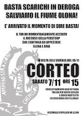 CORTEO 7/11 A CASTELLANZA E PRESIDIO TAR LOMBARDIA 19/11