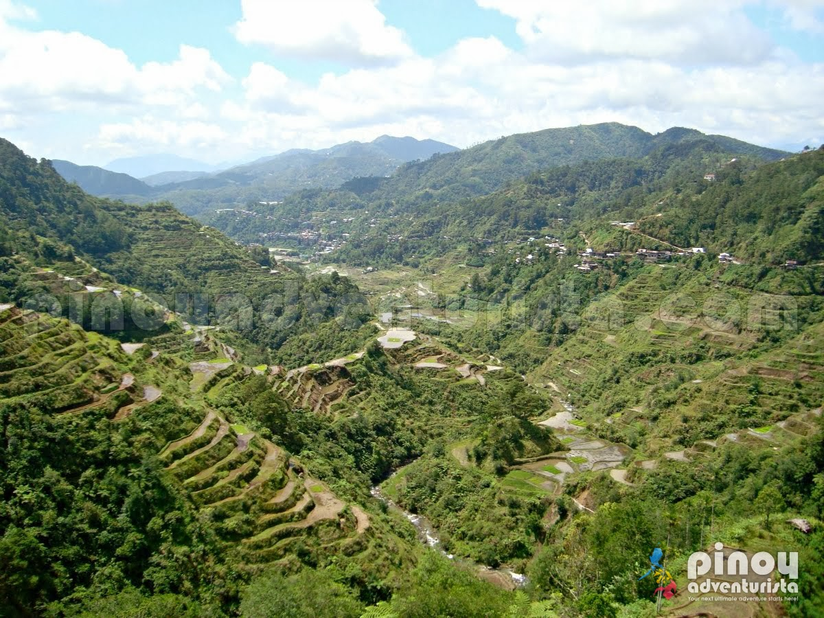 banaue tour guiding script Considered as the eighth wonder of the world, the banaue rice terraces is one of the philippines' most admired and most visited tourist.