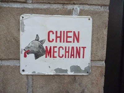Chien Mechant
