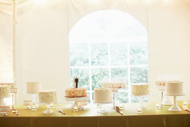 Minneapolis Cake Buffet for Wedding Celebration