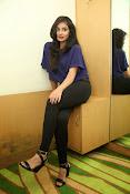 Bhanu sri mehra sizzling photos-thumbnail-19